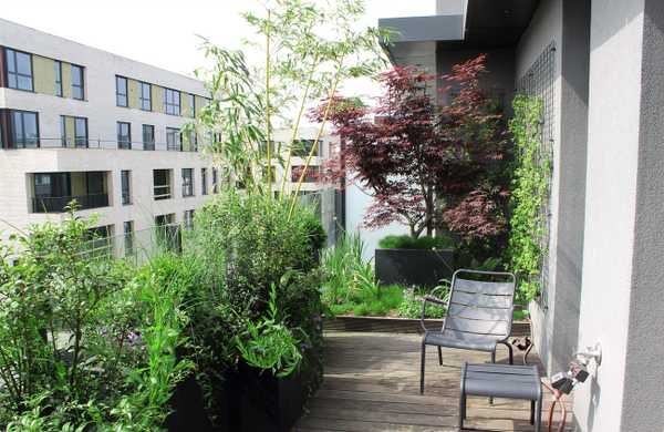 Landscaping of a penthouse terrace